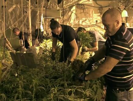צפו: פשיטה משטרתית על מעבדת סמים  (צילום: מתוך כחולים ,שידורי קשת)
