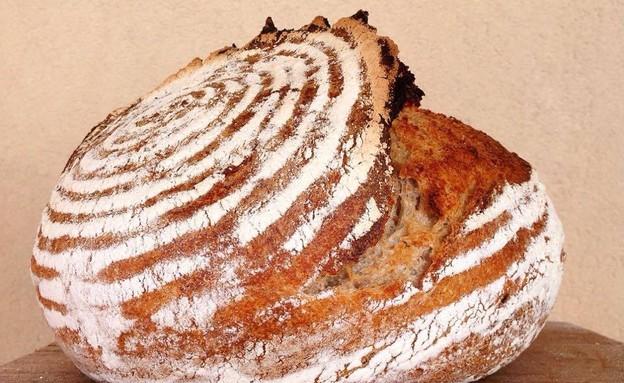 הלחם שלי ושל סטפן (צילום: מיכל לויט ,אוכל טוב)