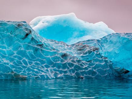 קרחונים נמסים, יערות נעלמים