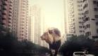 אריה משוטט ברחובות עיר (צילום: מעבורת ,מעבורת)