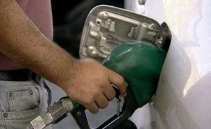 דלק (צילום: חדשות 2)