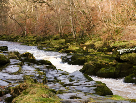 הסטריד - הנחל שבולע אנשים (צילום: P.D.T.N.C, Shutterstock)