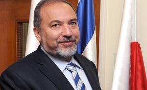 שר הביטחון ליברמן (צילום: פלאש 90, משה מילנר)