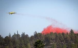 שריפות רבות ברחבי הארץ, היום (צילום: Hadas Parush\ פלאש 90)