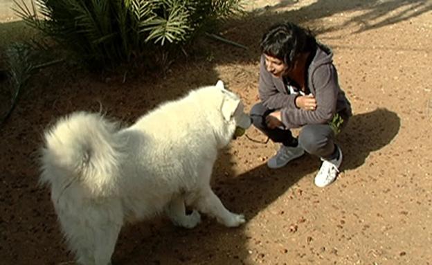 """""""רציתי לחלץ את הכלב שלי, זה הדבר היחיד שראיתי"""" (צילום: חדשות 2)"""