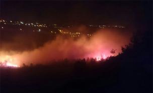 """השריפה בטלמון, אמש (צילום: כבאות יו""""ש)"""