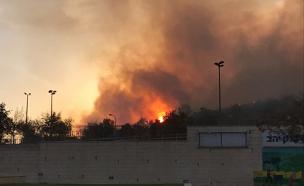 שריפה במודיעין, אש, להבות, כיבוי (צילום: חדשות 2)