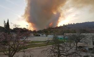 יום שלישי לגל השריפות (צילום: דרור איבגי)