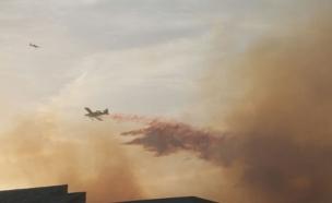 כיבוי השריפה במודיעין, אתמול (צילום: ניצן אביבי)