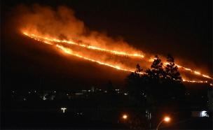 """השריפה ליד כרמיאל (צילום: כב""""ה צפון)"""