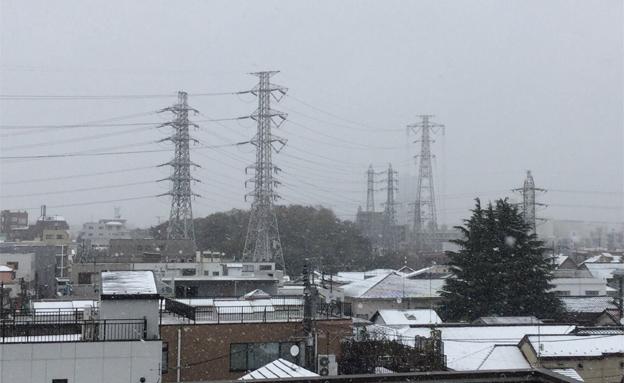 בוקר לבן בטוקיו (צילום: טוויטר)