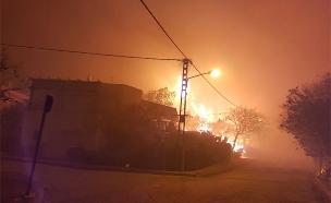 השריפה בחלמיש, הלילה (צילום: דוברות המשטרה)