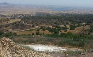 גבול סוריה (צילום: חדשות 2)
