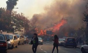 """""""העבירו את הפיצויים"""". שריפה בחיפה (צילום: טלי ריבקין)"""