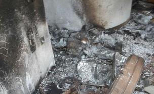 שריפה (צילום: חדשות 2)