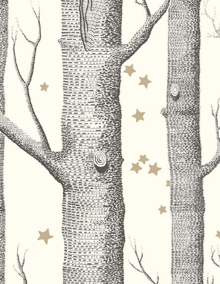 טפטים, היער הקסום, 717 שקל, להשיג ב-just kids wallpaper