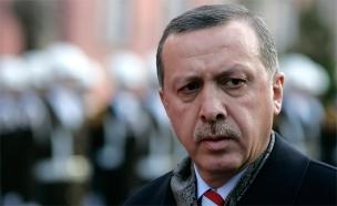 נשיא טורקיה - ארדואן (צילום: רויטרס)