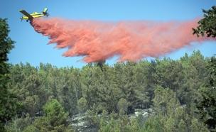 גל השריפות במספרים (צילום: Hadas Parush  \ פלאש 90)