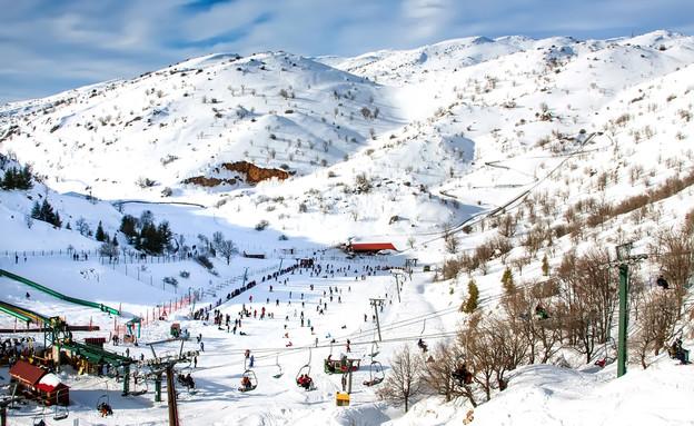 שלג בחרמון (צילום: maratr, Shutterstock)