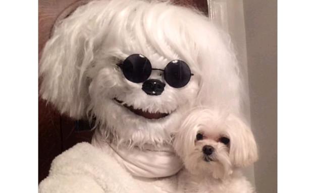 אנשים שאוהבים את הכלבים שלהם הרבה יותר מדי (צילום: טוויטר ,מעריב לנוער)