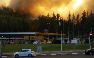 השריפה בחיפה, בשבוע שעבר