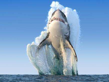 התמונה המזויפת של כריש קופץ (עיצוב: ShutterStock ,ShutterStock)