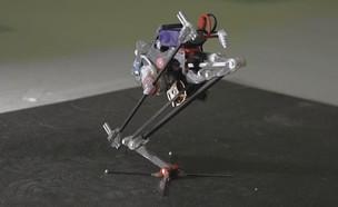 Salto, הרובוט שקופץ לגובה (צילום: UC Berkeley)