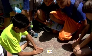 טירוף המדבקות שמשגע את הילדים (צילום: חדשות 2)