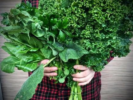קייל טרי ועוד ירוקים (צילום: מיכל לויט והאנה מופת ,אוכל טוב)