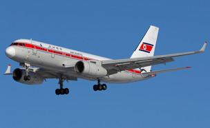 מטוס של אייר קוריאו (צילום: Fasttailwind, Shutterstock)