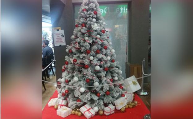 עץ חג המולד בבית הסטודנט (צילום: נועם יוסף)