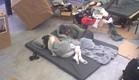 דן ושני על הרצפה בחדר השינה (צילום: האח הגדול 24/7)