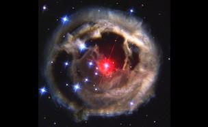 נובה אדומה (צילום: ויקימדיה)