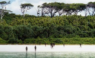 אי הודי (צילום:  Katie Hamann)