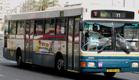 רק תחבורה ציבורית תפתור את הבעיה (צילום: חדשות 2)