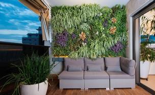 מרפסות, קיר צמחייה. מכניס ירוק לחיים העירוניים (צילום: ליאור אביטן, קירו)