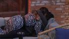סיגל והודיה מתחבקות (צילום: 2025, קשת 12)