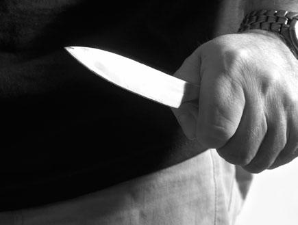 סכין שלופה (צילום: Christopher O Driscoll, Istock)