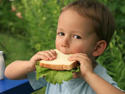 ילד אוכל כריך בגינה ולידו אקטימל (צילום: Olga Solovei, Istock)