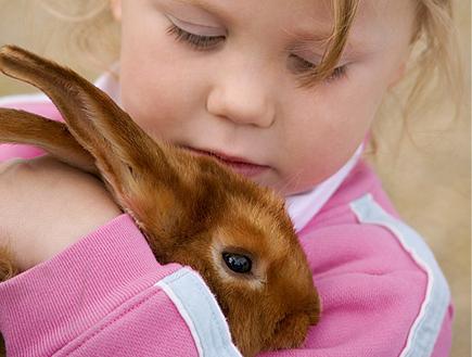 טיולי משפחות: ילדה בורוד מחבקת ארנב חום (צילום: jupiter images)