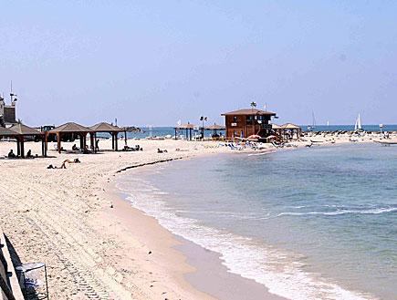 חוף הים (צילום: עודד קרני)