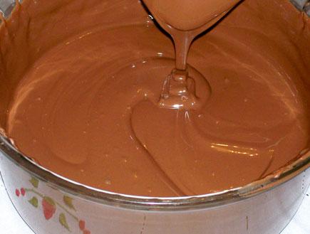 קערת שוקולד מומס (צילום: SXC)