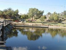 אגם בפארק ספיר (צילום: איל שפירא)