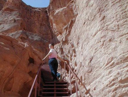 בחורה עולה במדרגות בפארק תמנע