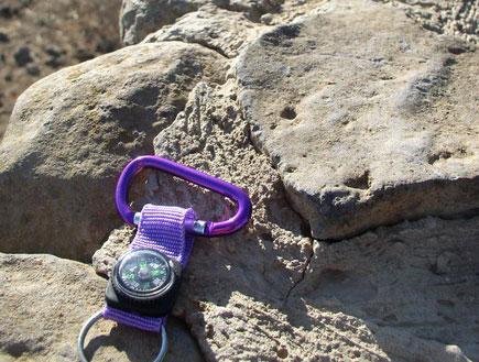 מצפן סגול בפארק הוולקני גולן (צילום: איל שפירא)