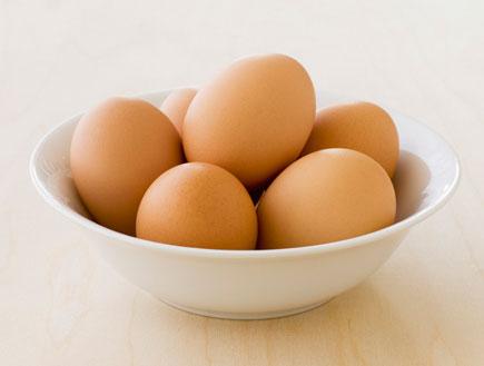 ביצים (צילום: SXC)