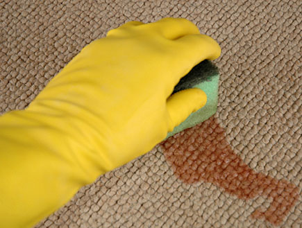 יד בכפפה צהובה מסירה כתם כתום עם ספוג משטיח (צילום: istockphoto)