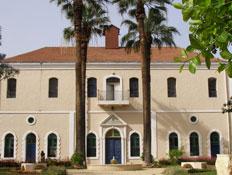 שני דקלים בחזית בית הכנסת מקוה ישראל