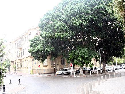 מכוניות חונות בחזית בניין בכיכר המלך אלברט בתל אבי (צילום: עודד קרני)