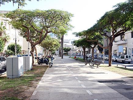 שדרות רוטשילד בתל אביב (צילום: עודד קרני)